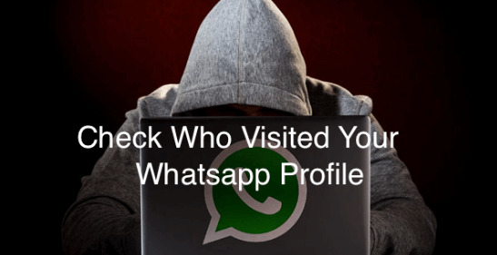 Check-Who-Visited-My-Whatsapp-Profile